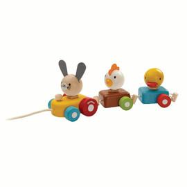 Plan Toys - Animal Train Sorter Pull Along Toy