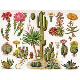 The New York Puzzle Company | Cacti 1000pc Jigsaw Puzzle